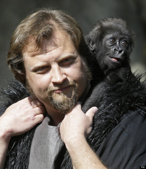 gladys gorilla