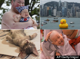 The Week In Photos - Vote On Your Favourite Pictures
