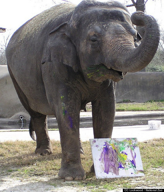 bozie national zoo