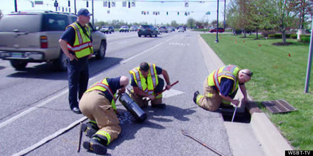 Firefighters Rescue Ducklings From Storm Drain In Indiana