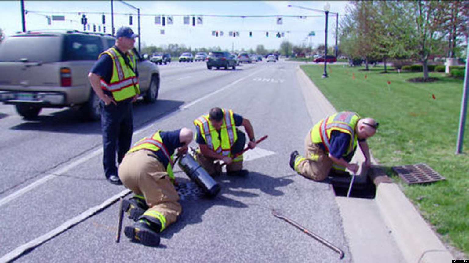 firefighters rescue ducklings  storm drain  indiana
