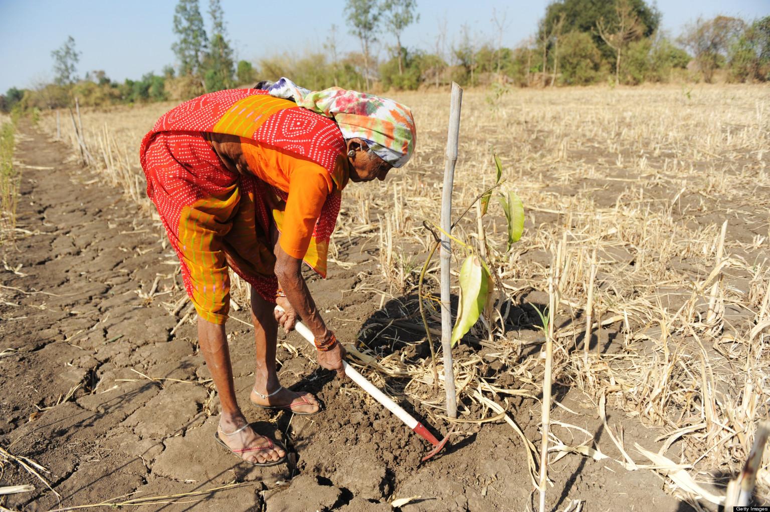 Essay on An Indian farmer