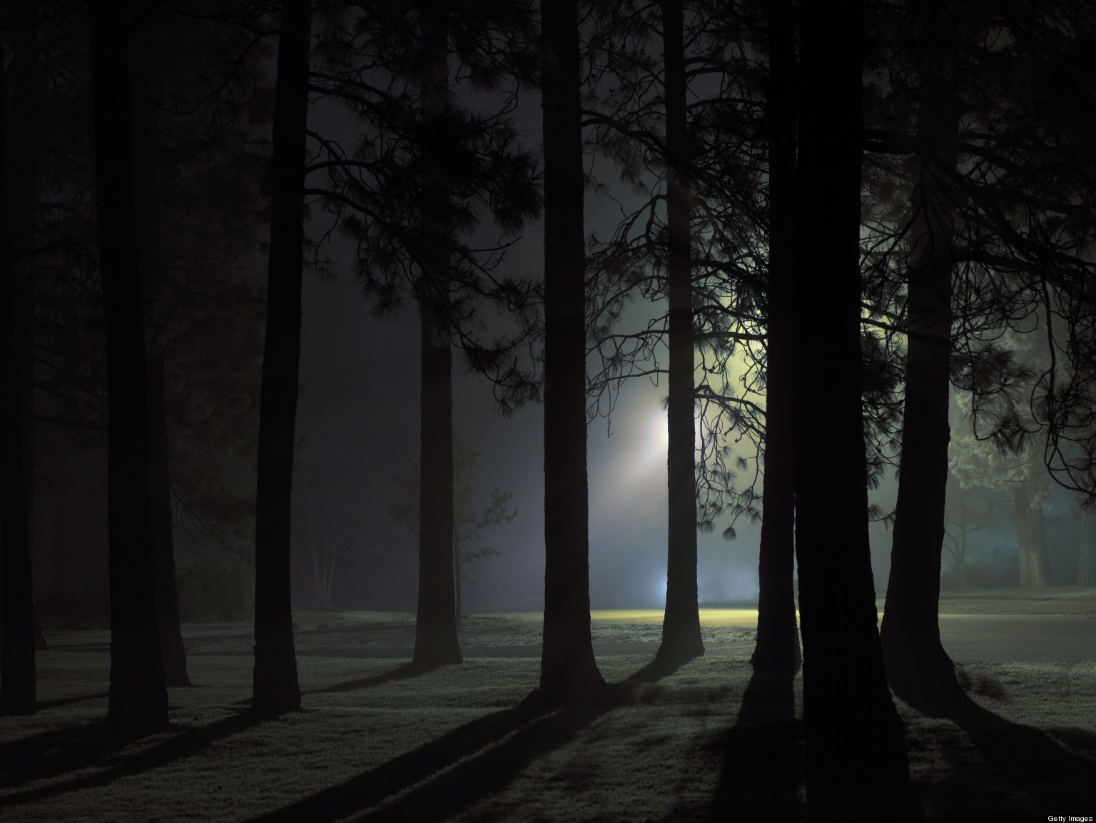Paranormal Activity Haunts Santa Cruz Mountains | HuffPost