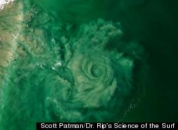Whirlpool Vortex: Paraglider Captures Huge Rip Current Off Australian Coast (PICTURE)