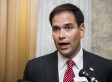 Marco Rubio: IRS Commissioner Should Resign