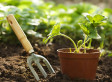The Sun Is Here at Last - Get Into the Sun and Exercise the Gardening Way