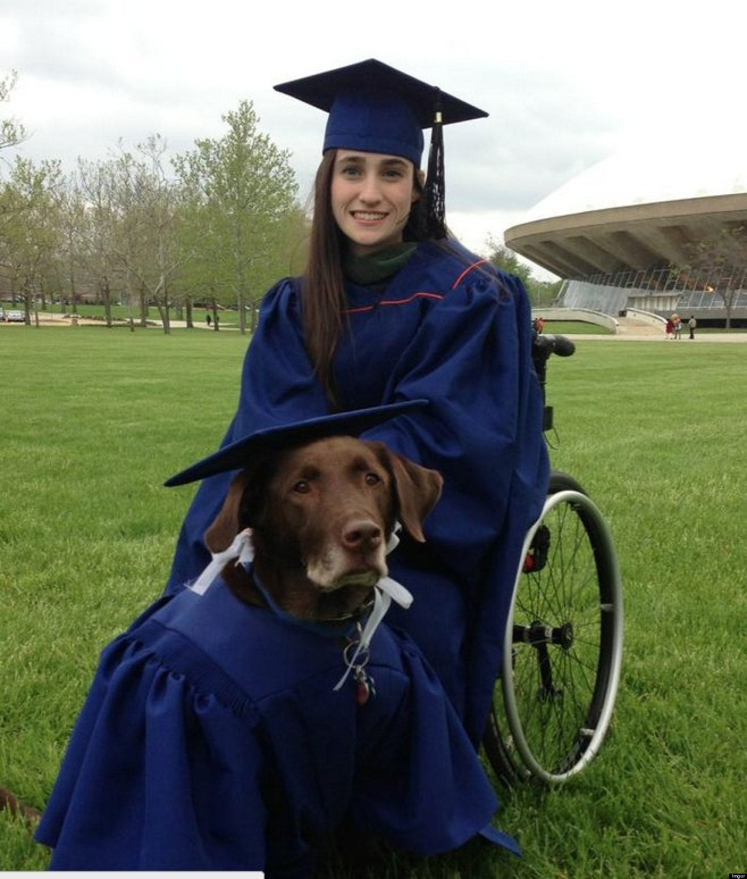 Service Dog Arrives At College Graduation In Cap And Gown, Becomes ...
