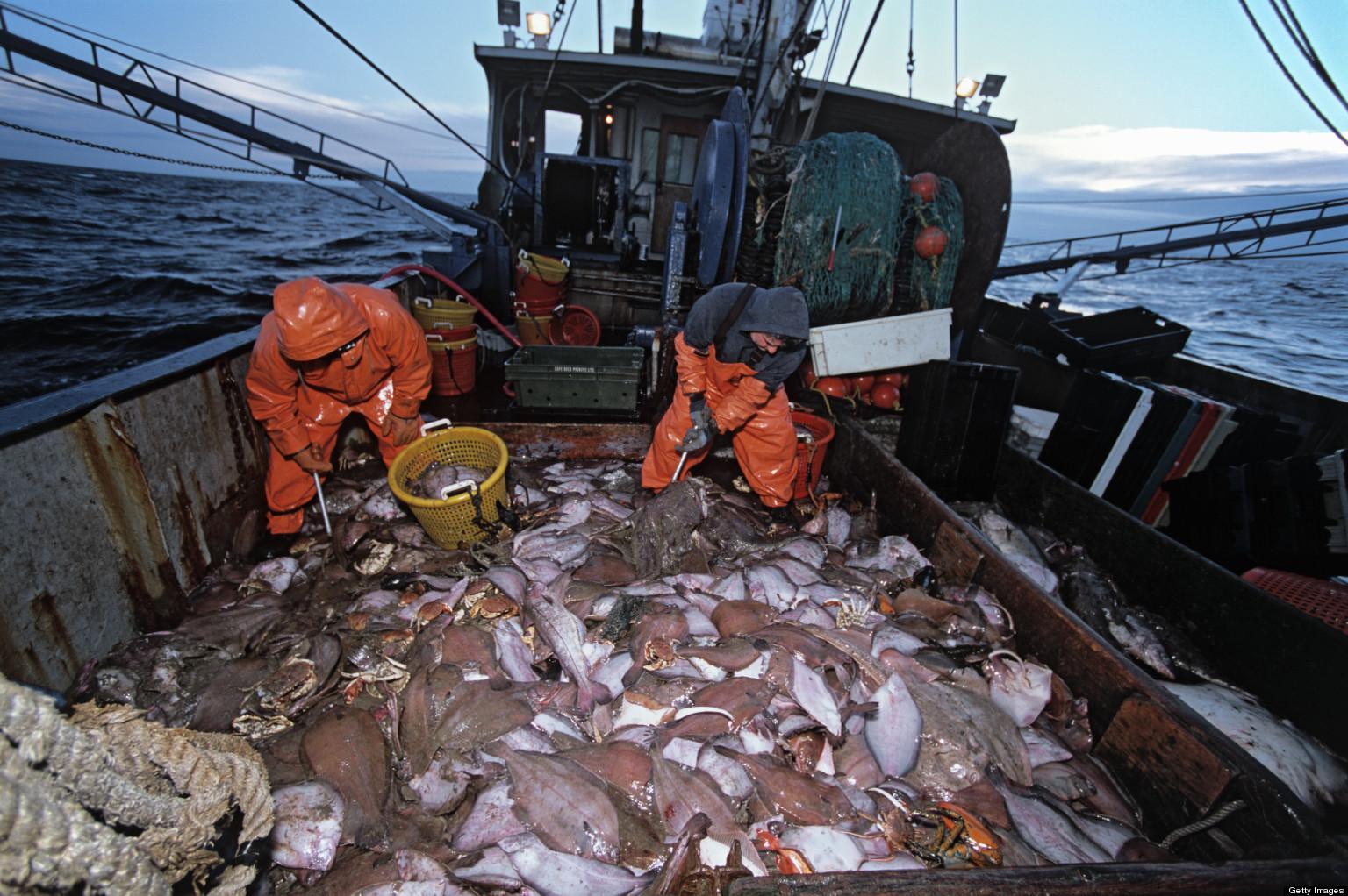 промышленная рыбная ловля  на океане