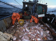 Climate Change Impacts Ripple Through Fishing Industry While Ocean Science Lags Behind