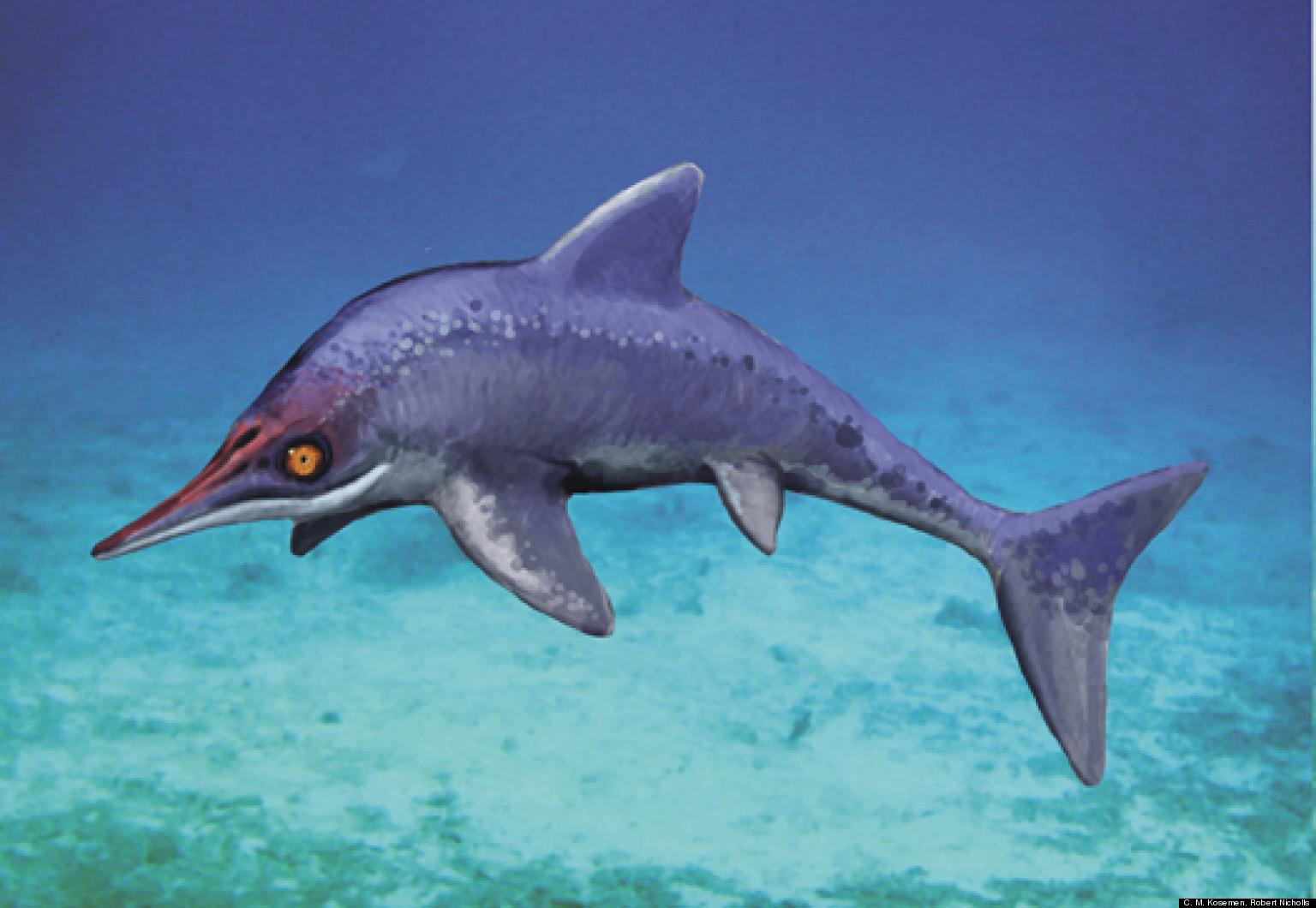 Marine Reptile ... Ictiosaurio