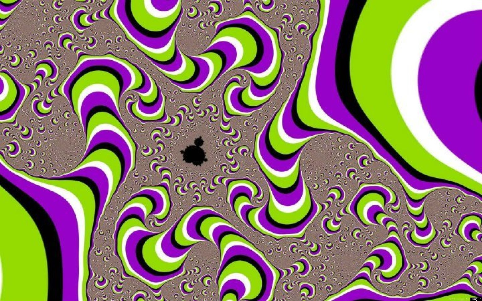 10 Optical Illusions That Will Blow Your Mind  PHOTOS
