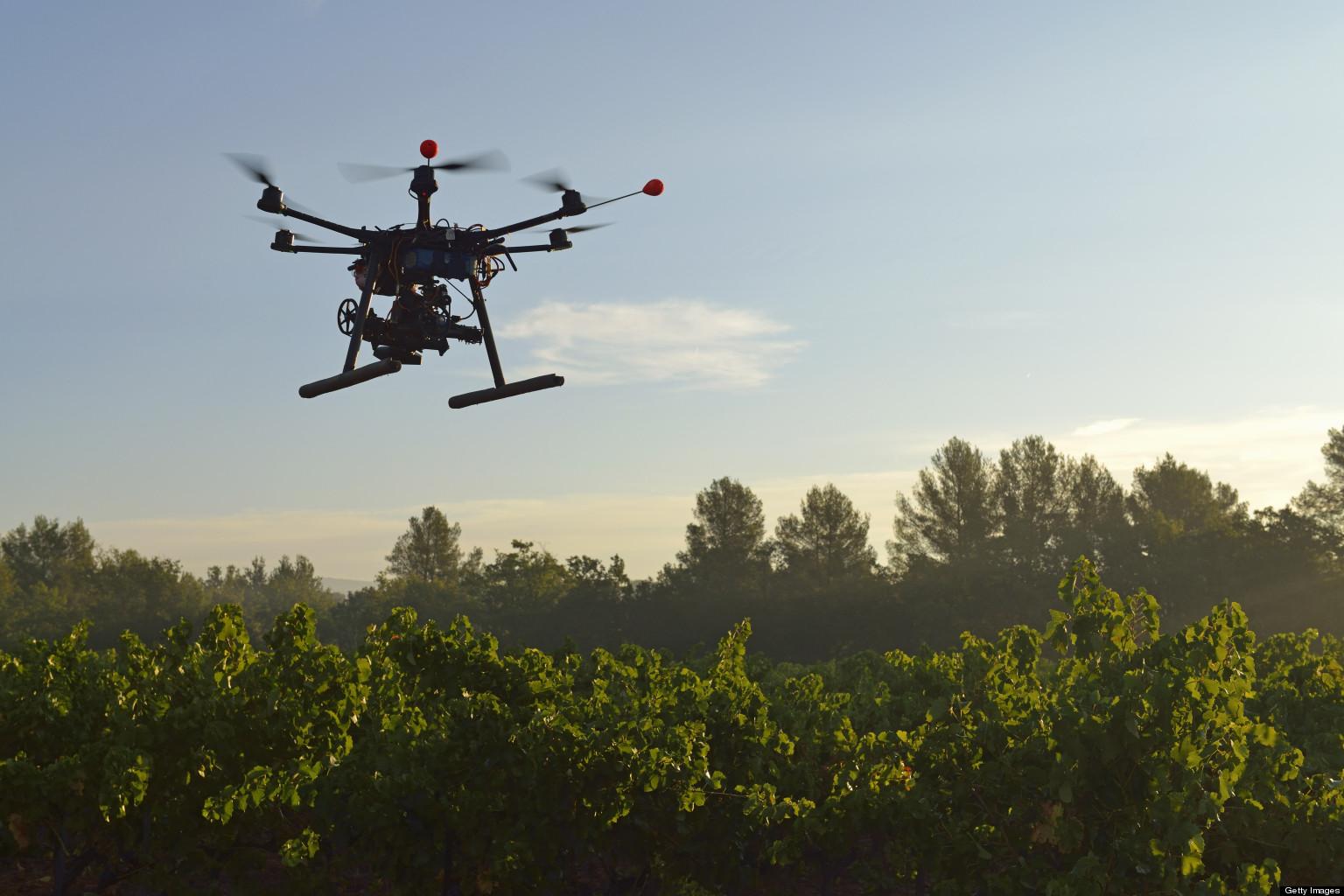 Drone agricole survolant des vignes