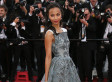 Zoe Saldana's Cannes 2013 Dress Channels Shades Of Grey (PHOTOS)