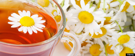 camomile tea treat cancer