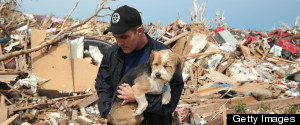 How To Help Animals Affected By The Oklahoma Tornado