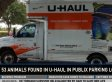 Frances Terry Evans, Florida Woman, Abandons 53 Animals In U-Haul In Publix Parking Lot