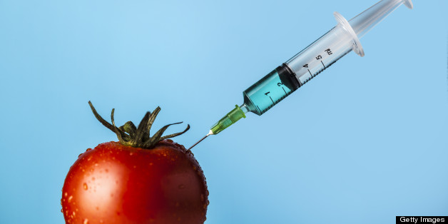 the impact of genetically modified foods in the united kingdom Restrictions on genetically modified  the russian federation and the united states  while trying to mitigate the impact of llp situations in food.
