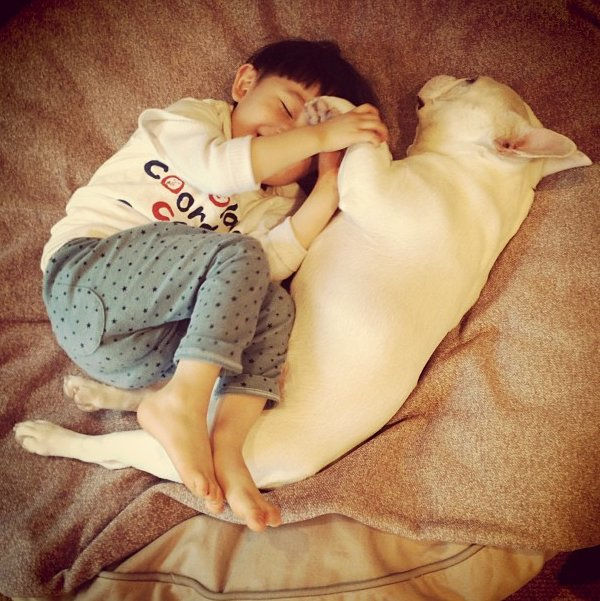 Dogs And Babies Sleeping Are What The World Needs Now -7427
