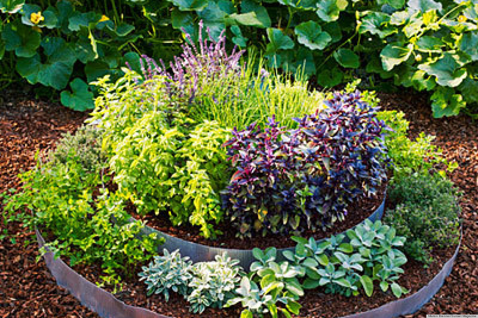 Raised Bed Garden And Garden Grass Landscaping Beauteous Raised Bed ...