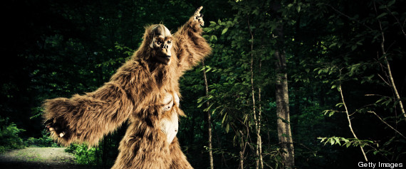 Best States For Bigfoot