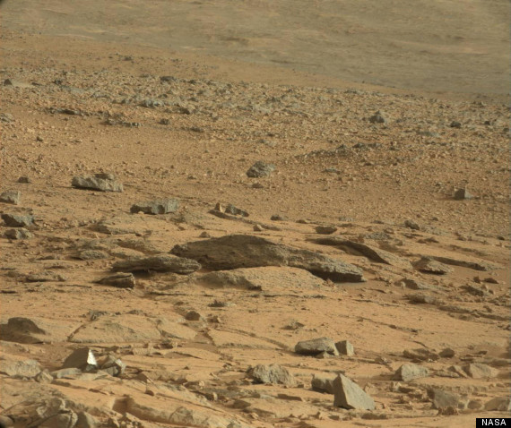 Is that a RAT… on Mars?! (LOOK)