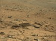 Mars Rat? Blogger Spots 'Creature' In NASA Curiosity Rover Image (PHOTO)
