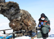 Mammoth With Blood In Carcass May Aid Efforts To Clone Prehistoric Mammal (PHOTOS)