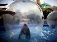 Superland, Amusement Park In Israel, Denies Segregation Of Arab And Jewish Children