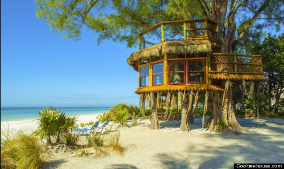 florida treehouse beach