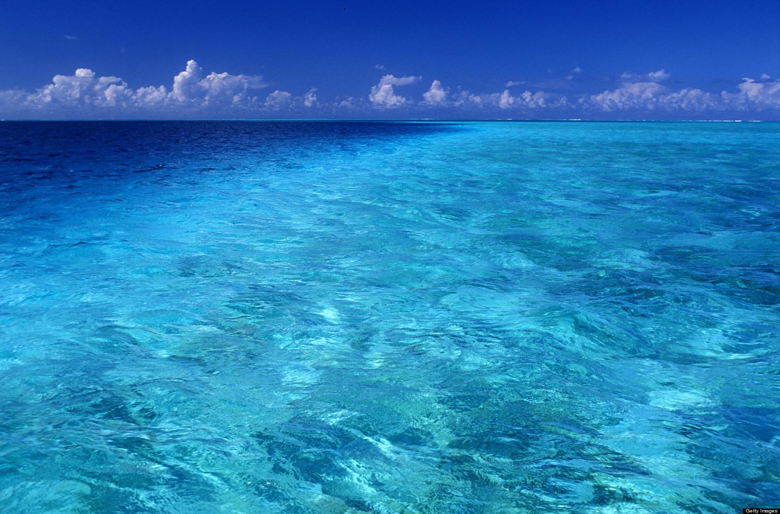 Preserving Our Underwater World