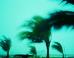 Cyclone Pam and the British Good Samaritan