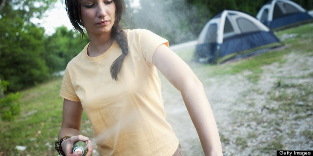 Opinion mosquito teen repellant think, that