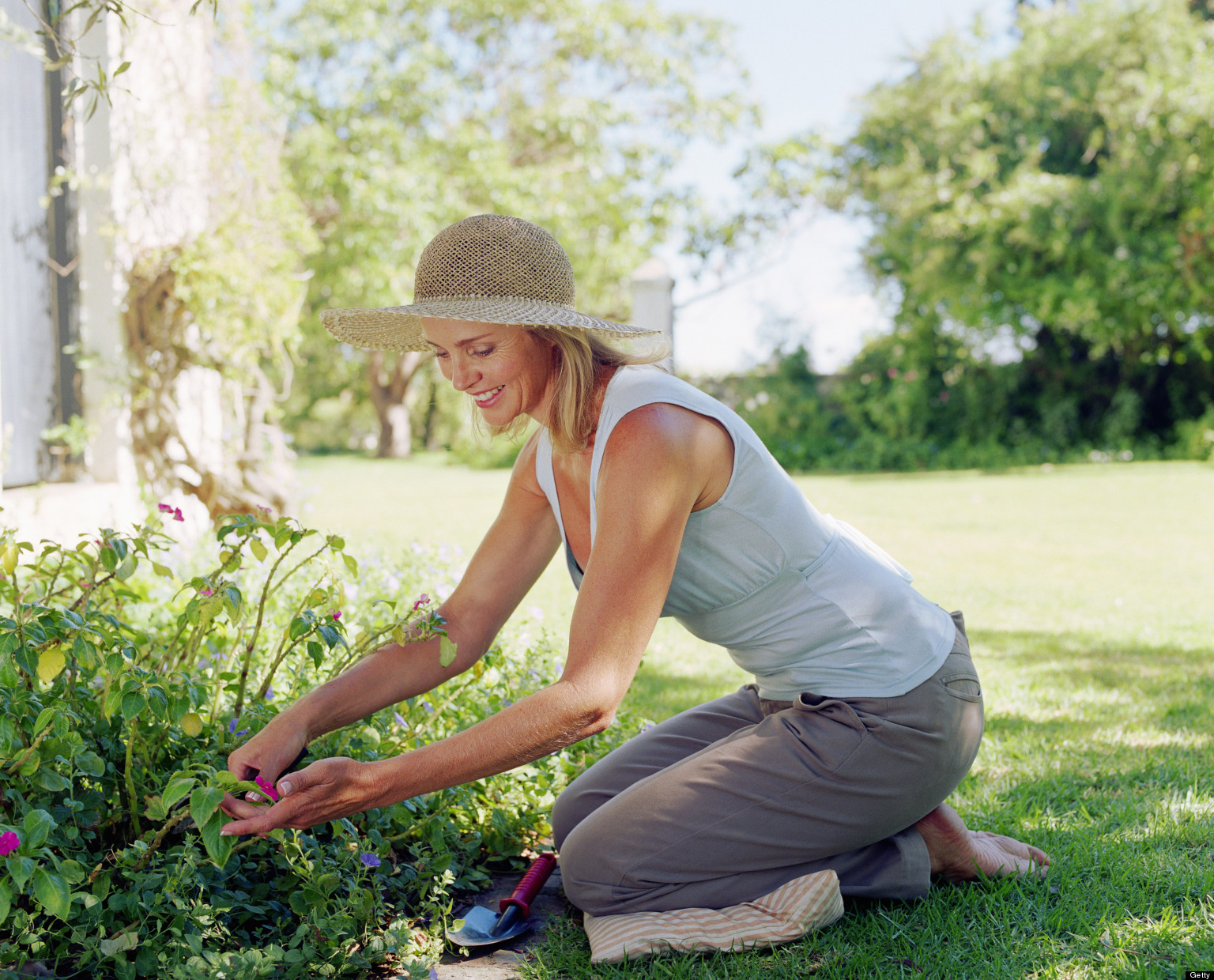 Community Engagement Gardening In The Front Yard Huffpost