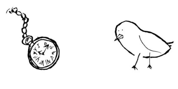 bird and watch