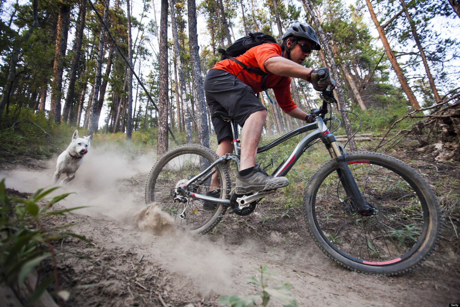 Image result for mountain bikers