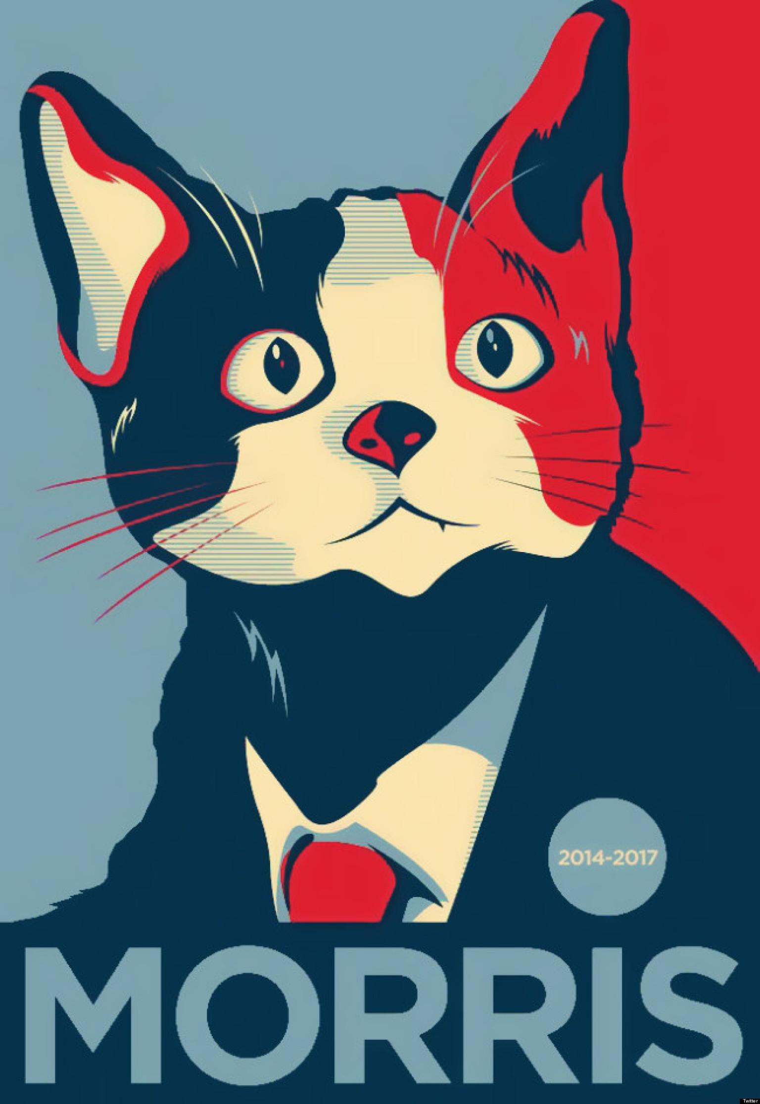 http://i.huffpost.com/gen/1179829/thumbs/o-MORRIS-CAT-FOR-MAYOR-facebook.jpg