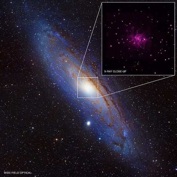 new black holes