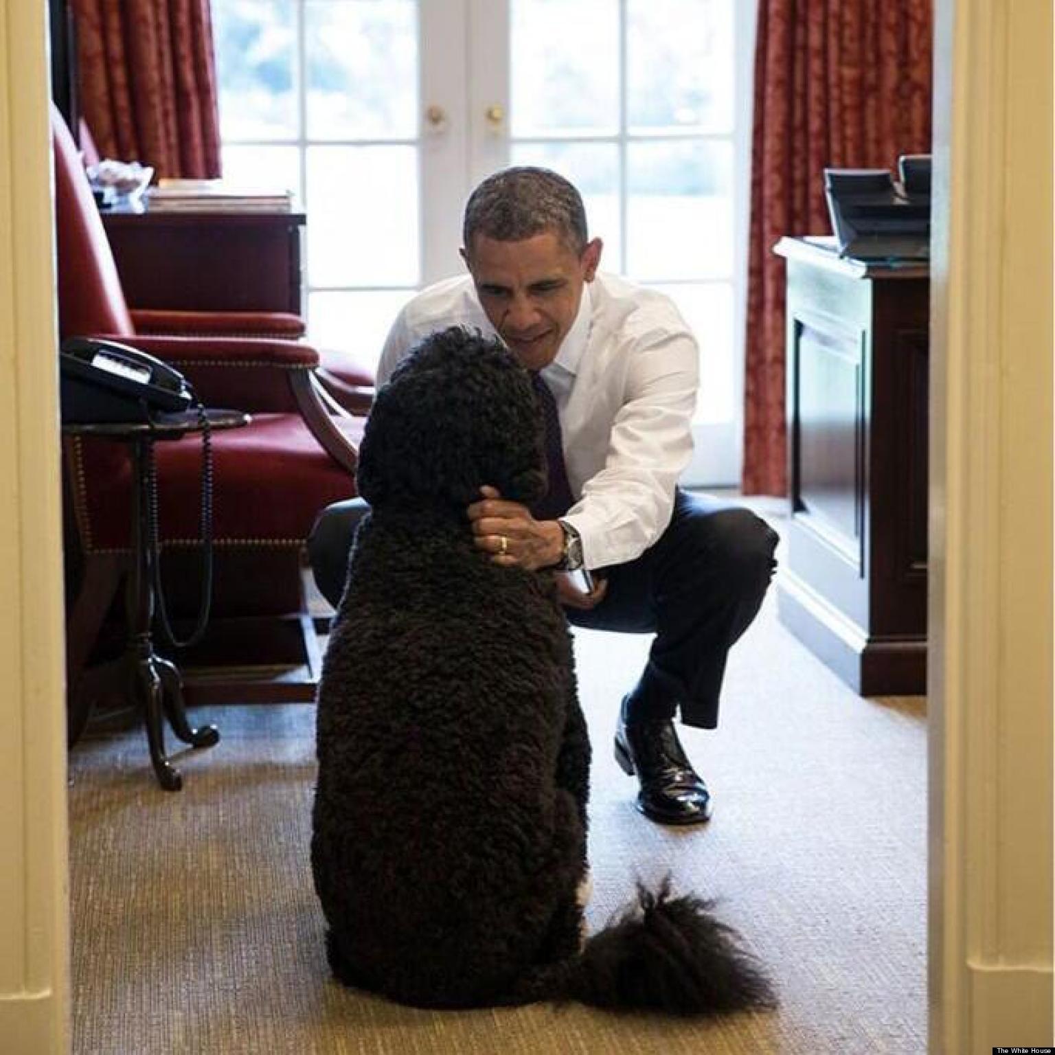 オバマを撮り続けたホワイトハウス公式カメラマン、お気に入りの写真55枚をアイムジャグラーに投稿 [無断転載禁止]©2ch.net [539914983]YouTube動画>6本 ->画像>336枚