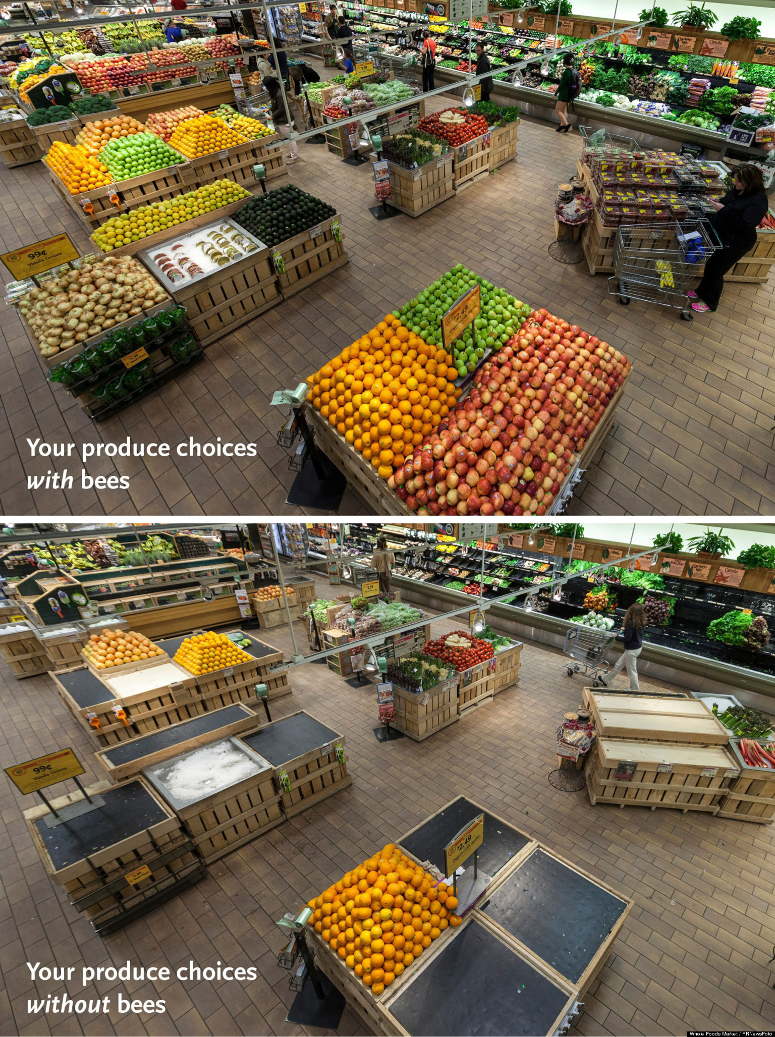 PHOTO: This Is Your Supermarket Without Bees