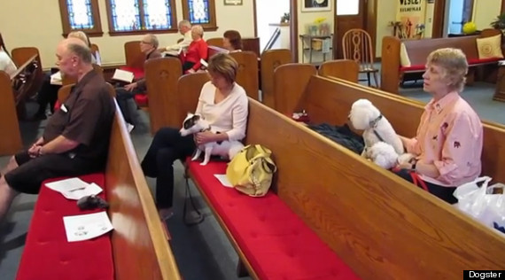 wisconsin church allows dogs