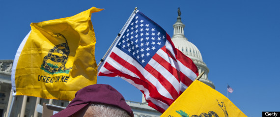 TEA PARTY AUDIT THE IRS