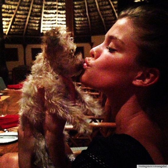models with dogs