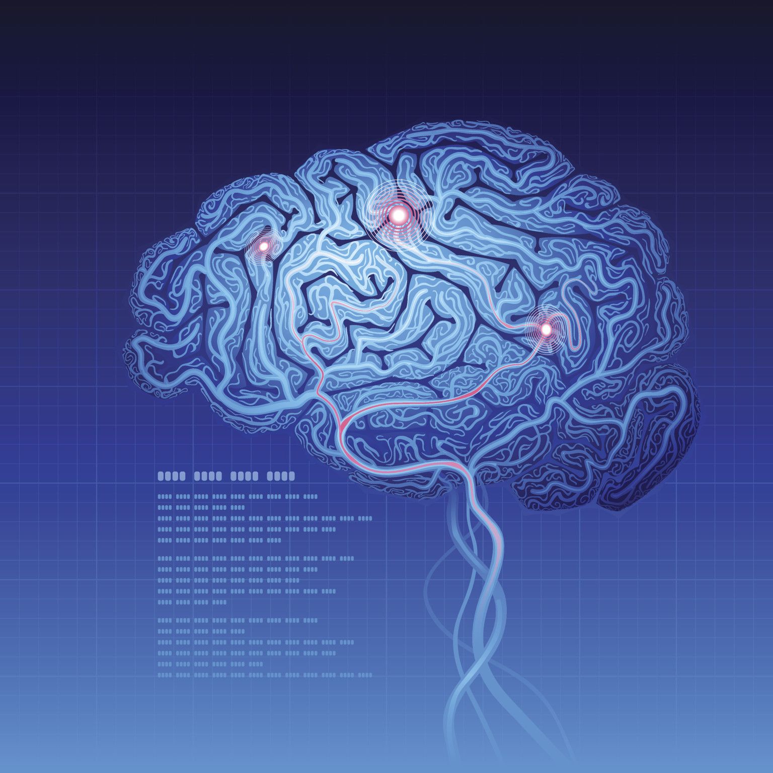 3D Brain Map New BigBrain Atlas Called Most Detailed