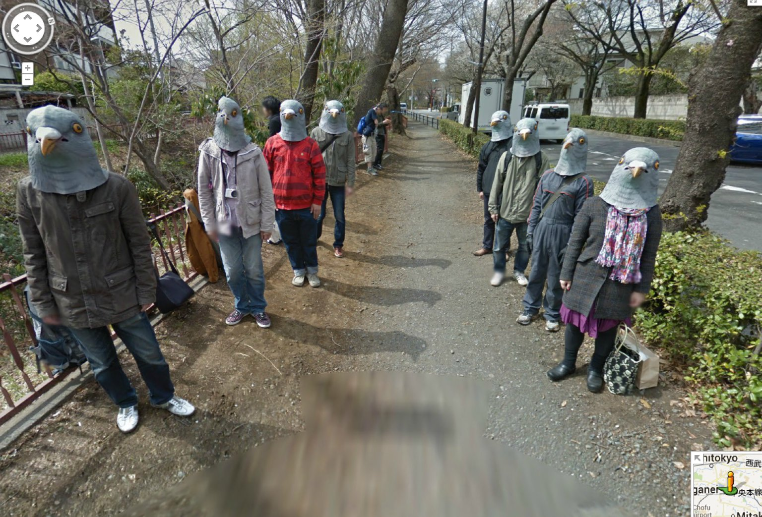 japan 39 s google street view pigeonheads are hilariously creepy photo huffpost. Black Bedroom Furniture Sets. Home Design Ideas