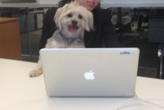 gunther checks the blogs