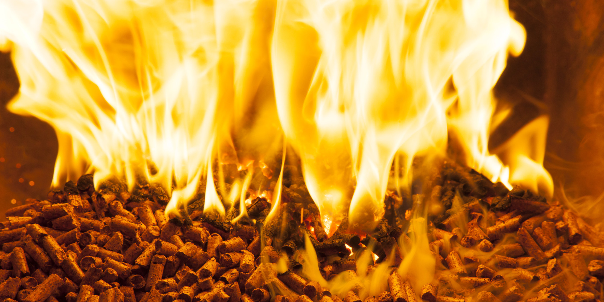 Burning Wood Biomass Pellets ~ Big biomass when burning wood for energy makes sense