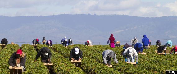 female farmworkers rape