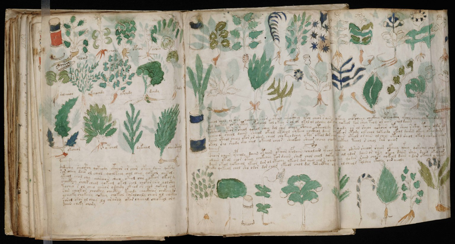 Voynich Manuscript Yale Voynich Manuscript