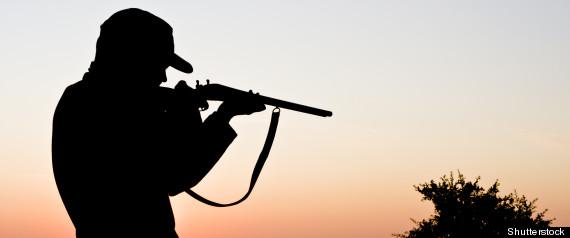 Registre des armes à feu
