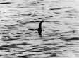 Loch Ness Monster Mystery Solved? 'Nessie' Just Bubbles From Seismic Activity, Geologist Says (VIDEO)